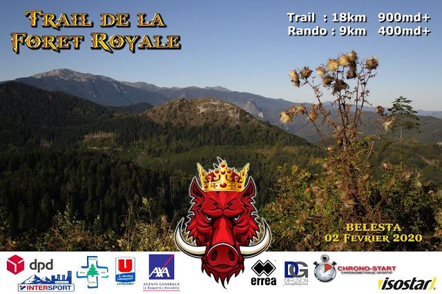 Premier trail de la forêt royale